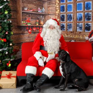 12 hhs santa by @lauraphotospets
