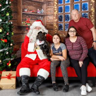 25 hhs santa by @lauraphotospets