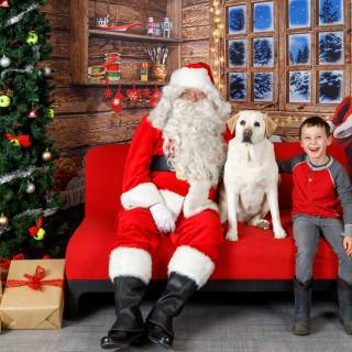 29 hhs santa by @lauraphotospets