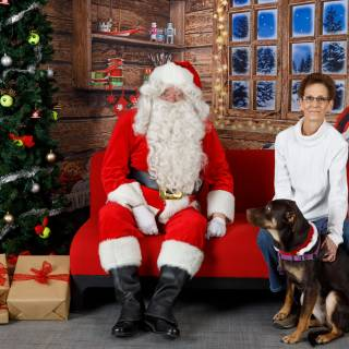 2 hhs santa by @lauraphotospets