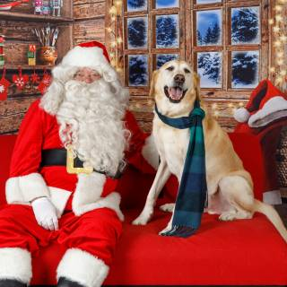 33 hhs santa by @lauraphotospets -2