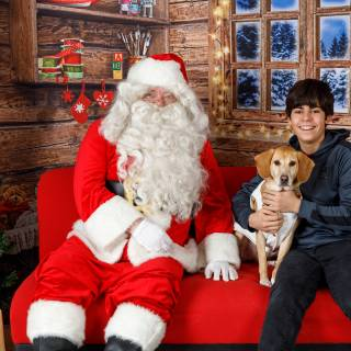 37 hhs santa by @lauraphotospets