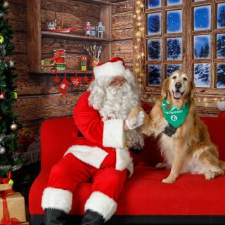 43 hhs santa by @lauraphotospets -3