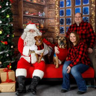 44 hhs santa by @lauraphotospets
