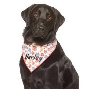 Harley (2020)