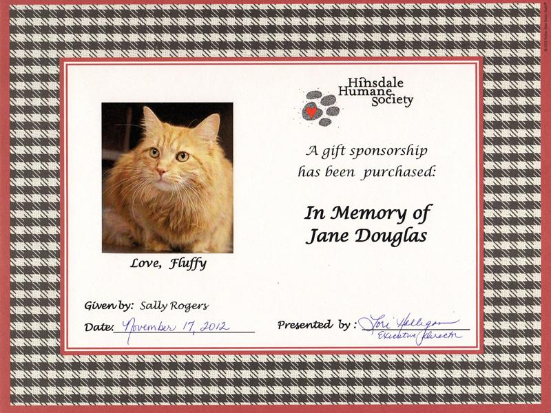 Sponsor a homeless animal hinsdale humane society sponsor certificate 3 yelopaper Choice Image