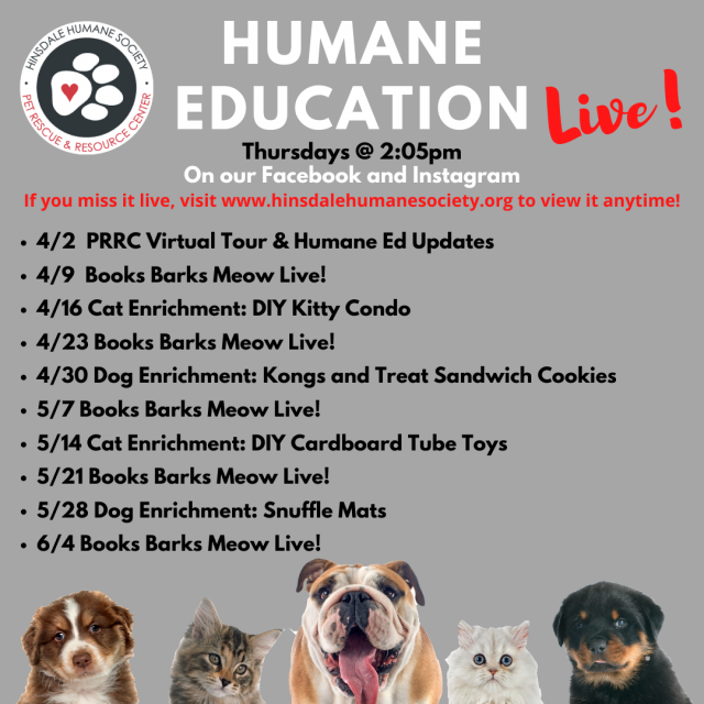 Humane education live