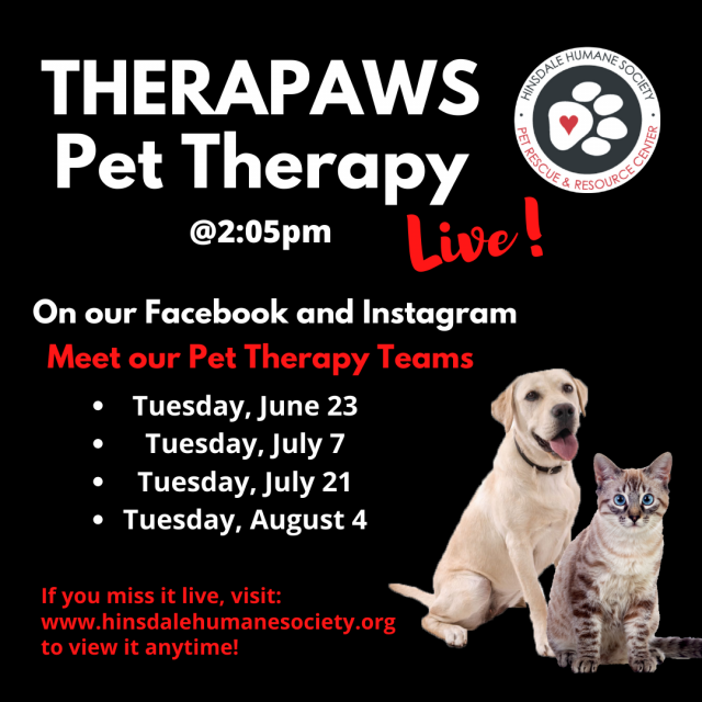 Therapaws pet therapy updated