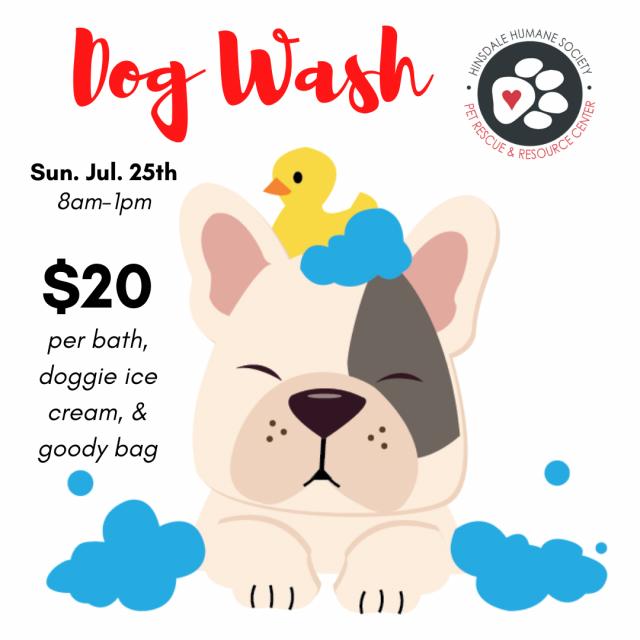 Dog wash 2021 graphic