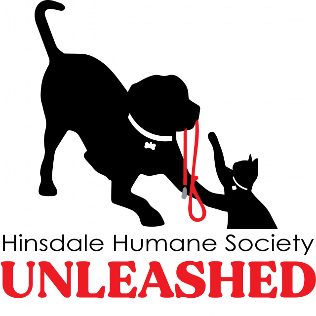 Hhs unleashed logo final