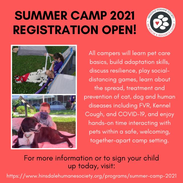 Summer camp 2021 sm graphic